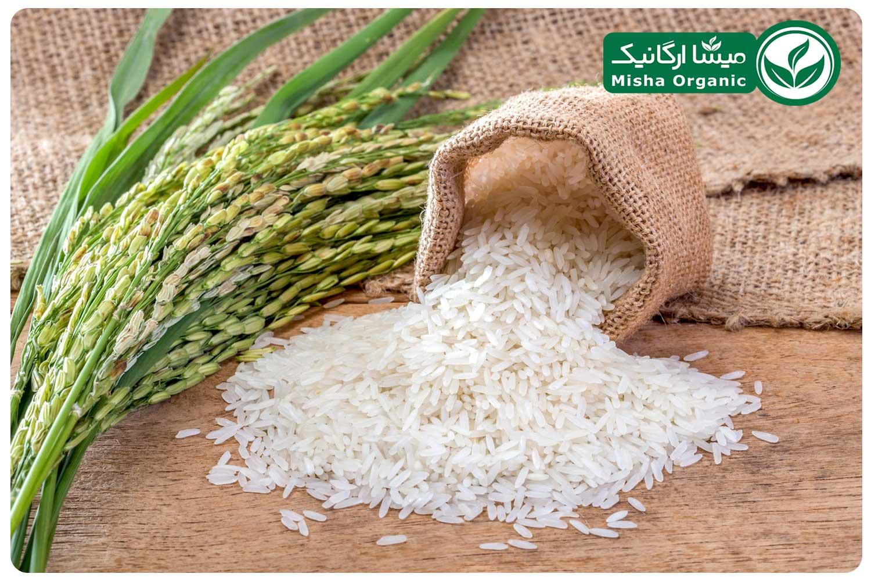 برنج سفید هاشمی ارگانیک